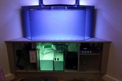 Aquarium Connections custom build aquarium 9