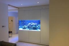 Aquarium Connections custom build aquarium 14