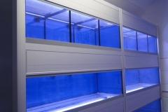 Aquarium Connections custom build aquarium 4