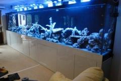 Aquarium Connections custom build aquarium 5