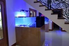 Aquarium Connections custom build aquarium 20 2 of 2